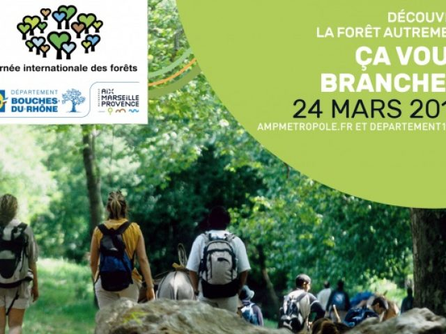 Journée internationale des forêts dans les Bouches du Rhône