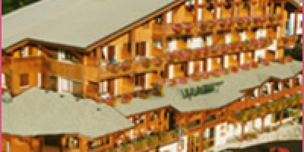 Hôtels clubs ou  locations de vacances, que choisir pour aller à la montagne en famille?