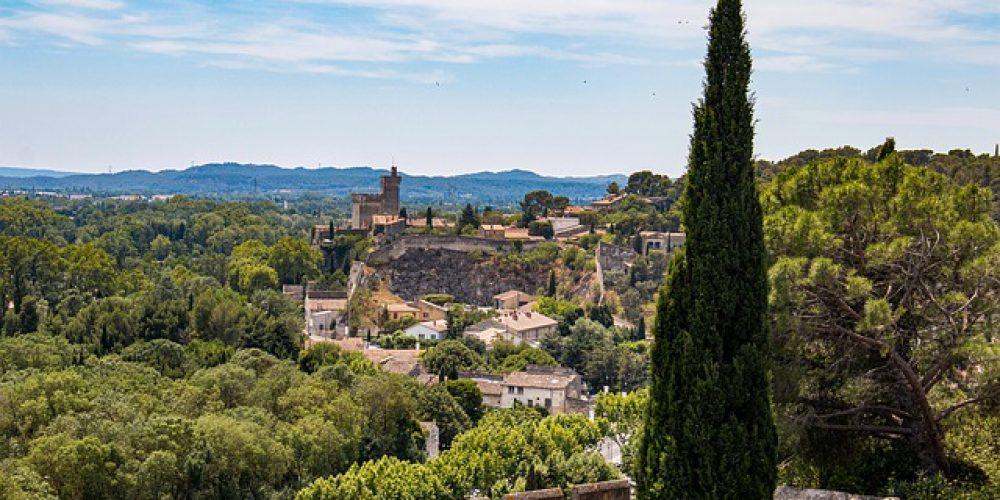 Tourisme Avignon : Top 10 des activités en famille